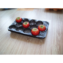 Thermoformed Perforated Blister Professional Produce Packaging Tomato Plastic PP Tray in FDA, SGS Standard