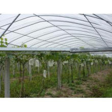 pp spunbonded nonwoven fabric for agriculture with UV