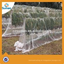 Nuevo estilo de red anti-granizo blanco con nuevo HDPE para manzano