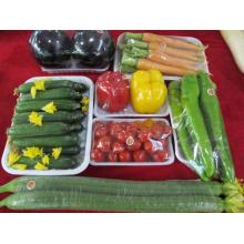 Boîte jetable faite sur commande de nourriture rapide en gros pour le marché (plateau en plastique)