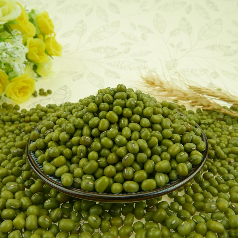 High Purity 2016 Crop Mung Bean Green Bean