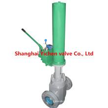 Válvula de portão plana hidráulica API 6A