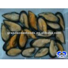 Frozen Boiled Vacuum Packaging Mussel Meat