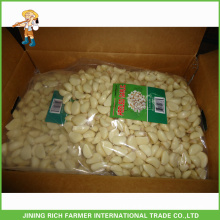 Naturally High Quality Chinese Fresh Peeled Garlic In 5LBS Bag For Export