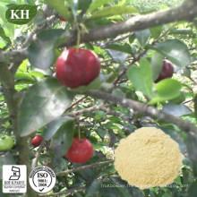 Haute teneur en vitamine C naturelle 17%, extrait de cerise acérola 25%