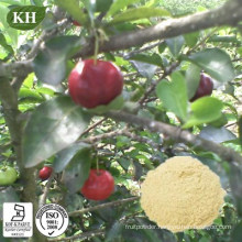 High Natural Vitamin C 17%, 25% Acerola Cherry Extract