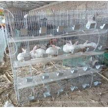 Hebei Anping Country Baiyi pas cher grande et cage de lapin en métal à vendre