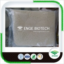 High quality insecticide Fipronil 80%WDG CAS 120068-37-3