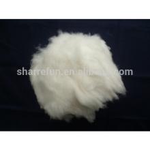 Angora chinois blanc 15.0mic / 32mm