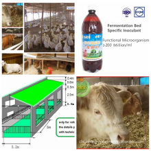 Inoculant Special for Fermentation Bed