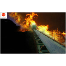 Whole Core Flame Retardant Conveyor Belt (MT914-2008)