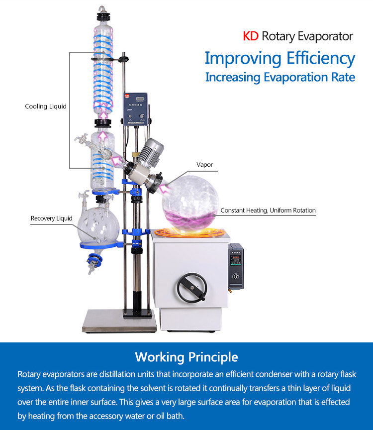 50L Big Lab Vertical Rotary Evaporators