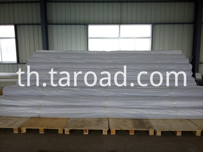 Self-Adhesive Glass Fiber Geogrid