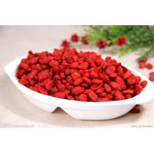Chinese Goji Berries