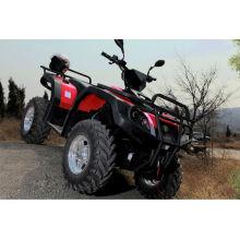 800 ccm Zweizylinder CVT 4 * 4 Diesel ATV(LZA800E-2)