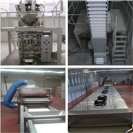 Goji berry processing equipment