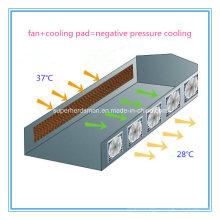 Equipo de avicultura computarizado de conjunto completo Sistema de enfriador de aire