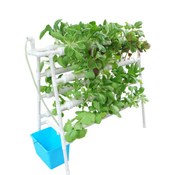 Indoor  planting A Hydroponics  plastic growing system
