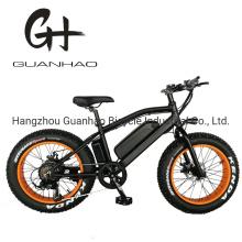 20inch 750W Fat Tire Mini Mountain Electric Bicycle