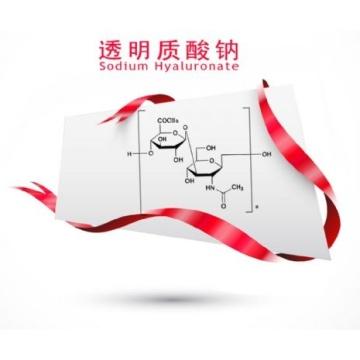 Ácido hialurônico de qualidade alimentar de primeira qualidade / Hyaluronato de sódio de baixo preço