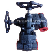 API602 800lb Forged Carbon Steel A105 Thread End Globe Valve