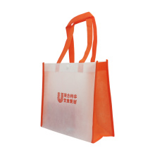 Direct Factory Hot Promo Non Woven Bag