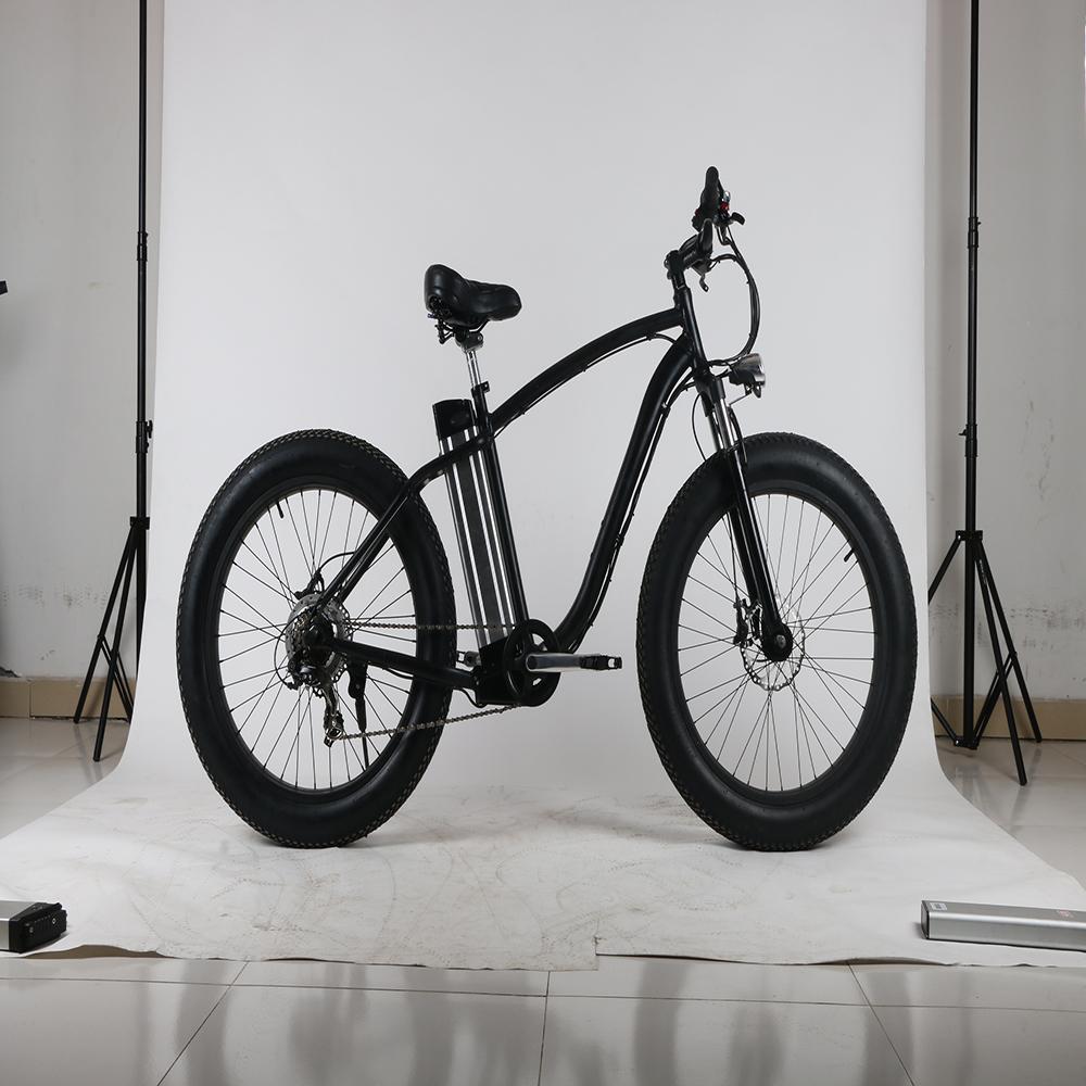 Silver fish snow bike