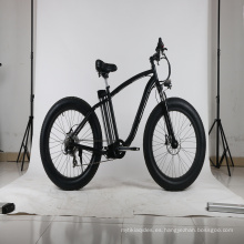 Bicicleta de nieve Silver Fish