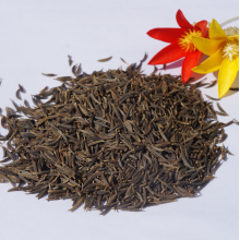 Good Quality for Bigflower Coreopsis Coreopsis seeds for planting supply to Togo Manufacturers