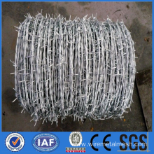 Barbed wire coil for boundary security