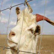 Schaf-Qualität Galvanisierter Schaf-Feld-Zaun