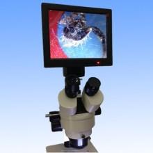 Microscopio Estéreo Cámara Digital con Pantalla LED de 8'tft Dm001