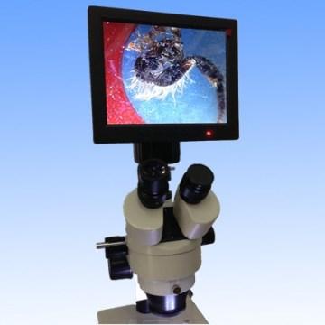 Câmera Digital de Microscópio Estéreo com Ecrã 8'tft-LED Dm001