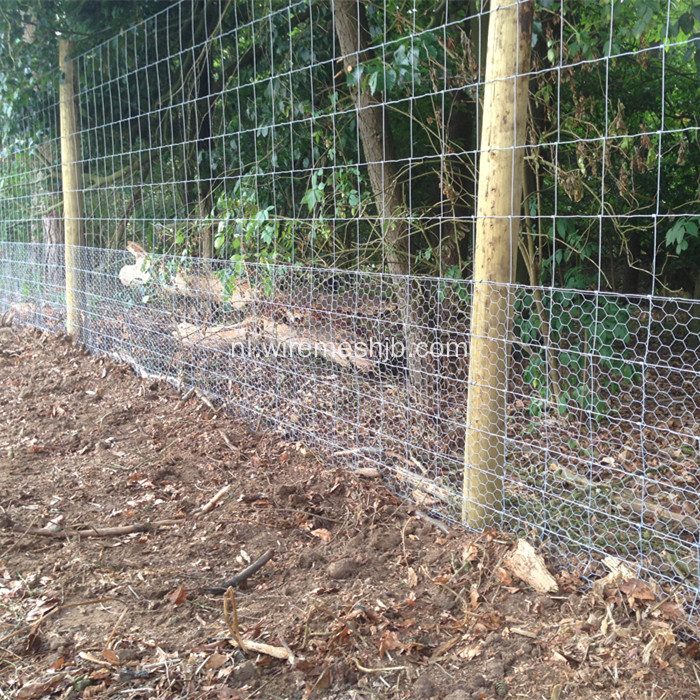 Woven Wire Fencing-Galvanized Kraal Network