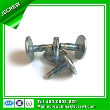 Torx Truss Head Screw, Big Head Screw