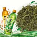 Té verde orgánico certificado de Sencha
