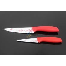 2PCS buntes Plastikhandgriff-Küche-Messer (SE150006)