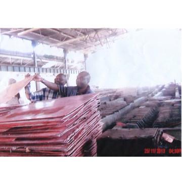 Grado de cátodo de cobre a 99.99% Min.