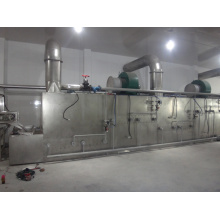 Stainless Steel Belt Dryer for Pleurotus eryngii mycelium