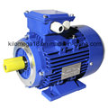 Three Phase Cast Iron Electric Motor with ISO