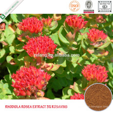 Rhodiola Rosea Rosavins 1% ~ 15% Rhodiola Rosea Seeds