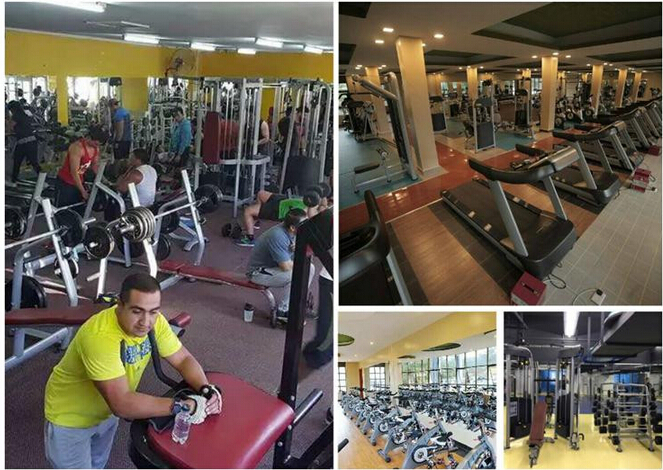 Luxury Gym Fitnes Equipment