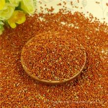 Millet de maïs de balai rouge pour l'alimentation d'oiseau avec le bon fabricant