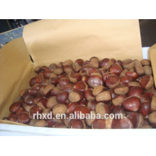 2016new products raw organic bulk nuts/snack foods peeled chestnuts for sale/roasted chestnuts