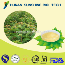 Extrakt-Verhältnis 30: 1 Rubus Suavissimus S. Extrakt extrahiert 75% Rubusosid / C32H50O13