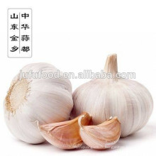 Meilleur ail de Shandong blanc pur d'ail blanc normal de nouvelle de vente de 2017