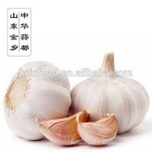 Melhor Venda 2017 Nova Colheita Normal Alho Branco Puro Alho Branco Shandong Alho