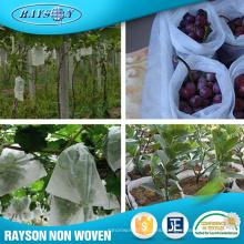 Productos de mayor venta 2016 Bolsa de fruta no tejida de protección