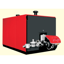 Central Heating System (Hot Water Boiler)