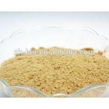 Hot Sale Organic Hemp Protein Powder
